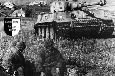 Panzer, Waffen SS, SS-Panzergrenadierdivision, Das Reich